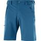 Salomon Wayfarer Shorts Men Regular moroccan blue